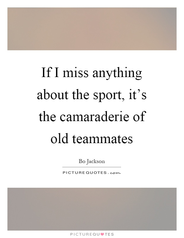 If I miss anything about the sport, it's the camaraderie of old teammates Picture Quote #1