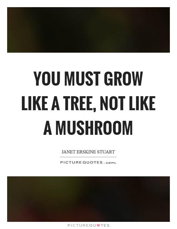 You must grow like a tree, not like a mushroom Picture Quote #1