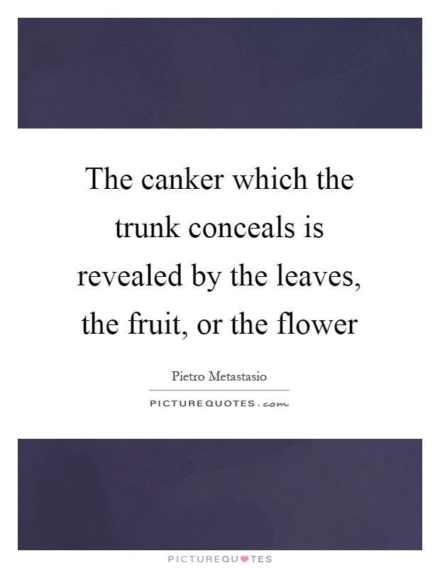 The canker which the trunk conceals is revealed by the leaves, the fruit, or the flower Picture Quote #1
