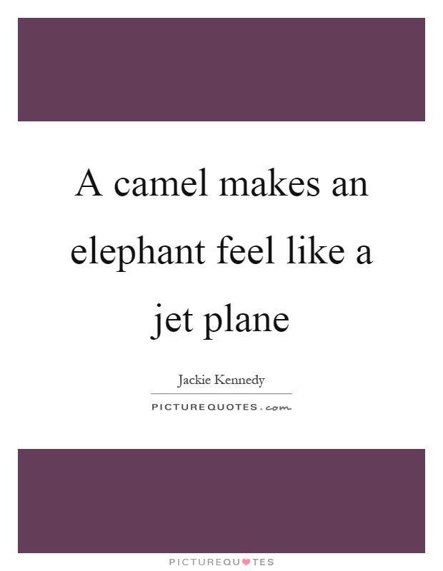 A camel makes an elephant feel like a jet plane Picture Quote #1