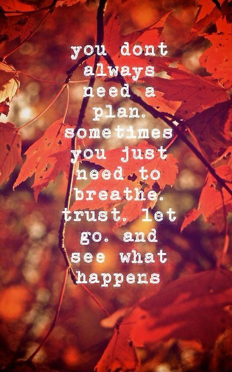 You don't always need a plan. Sometimes you just need to breathe, trust, let go, and see what happens Picture Quote #1