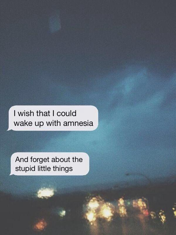I wish that I could wake up with amnesia and forget about the stupid little things Picture Quote #1