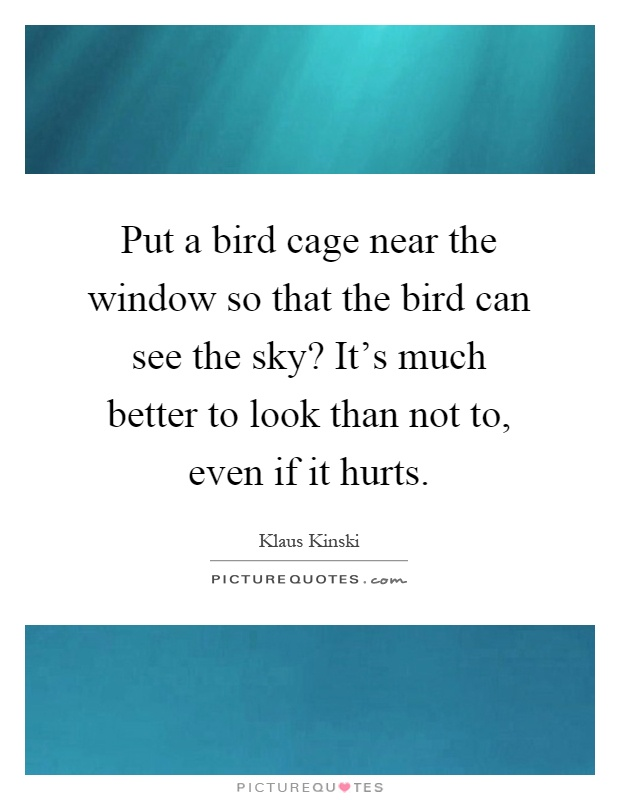 Put a bird cage near the window so that the bird can see the sky? It's much better to look than not to, even if it hurts Picture Quote #1
