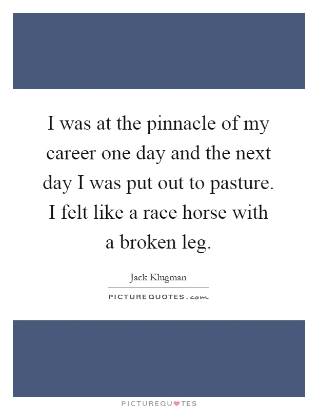 I was at the pinnacle of my career one day and the next day I was put out to pasture. I felt like a race horse with a broken leg Picture Quote #1