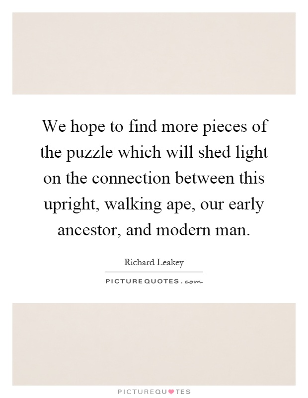 We hope to find more pieces of the puzzle which will shed light on the connection between this upright, walking ape, our early ancestor, and modern man Picture Quote #1