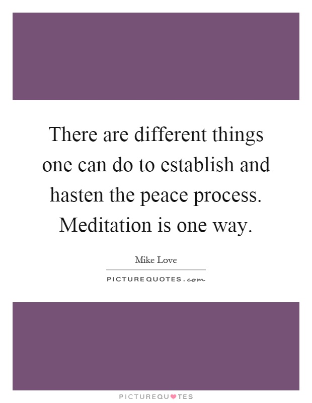 There are different things one can do to establish and hasten the peace process. Meditation is one way Picture Quote #1