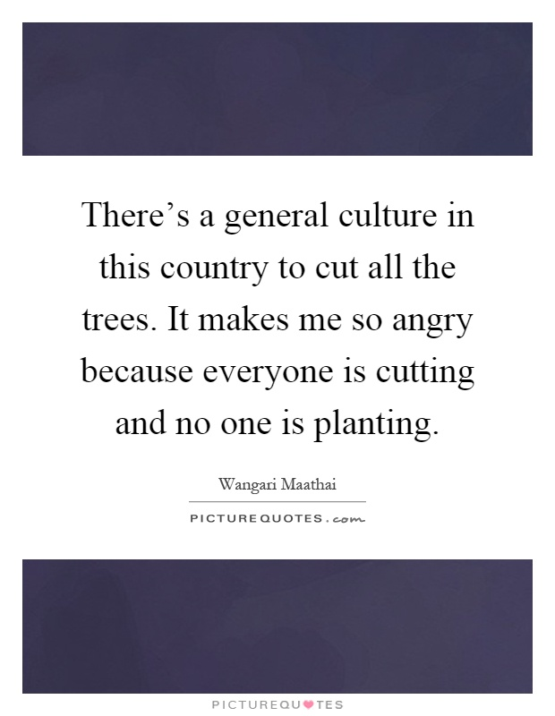 There's a general culture in this country to cut all the trees. It makes me so angry because everyone is cutting and no one is planting Picture Quote #1