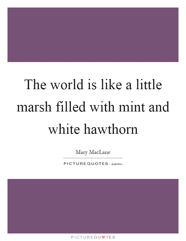 The world is like a little marsh filled with mint and white hawthorn Picture Quote #1