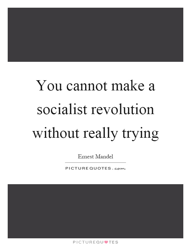 You cannot make a socialist revolution without really trying Picture Quote #1