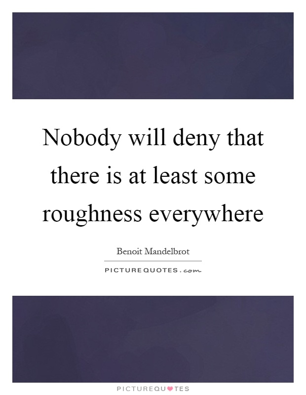 Nobody will deny that there is at least some roughness everywhere Picture Quote #1