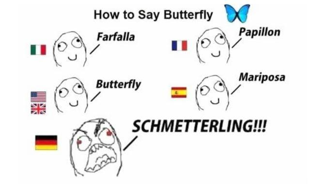How to say butterfly. Farfalla. Papillon. Butterfly. Mariposa. Schmetterling!!! Picture Quote #1