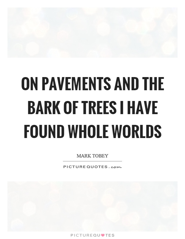 On pavements and the bark of trees I have found whole worlds Picture Quote #1
