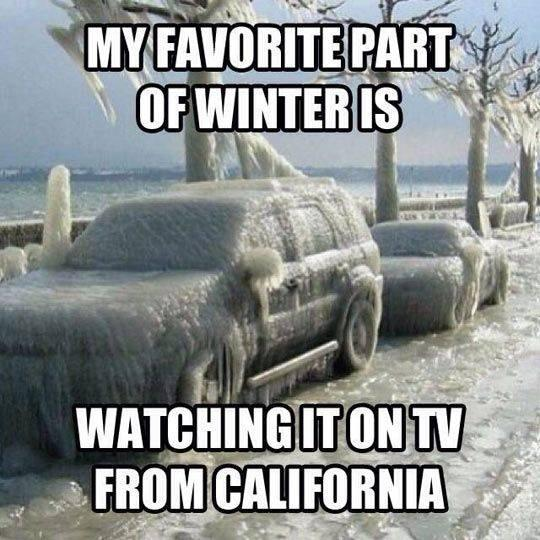 My favorite part of winter is watching it on TV from California Picture Quote #1