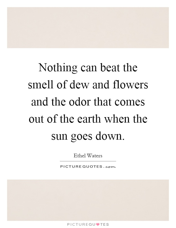 Nothing can beat the smell of dew and flowers and the odor that comes out of the earth when the sun goes down Picture Quote #1