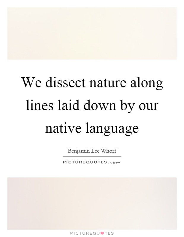We dissect nature along lines laid down by our native language Picture Quote #1