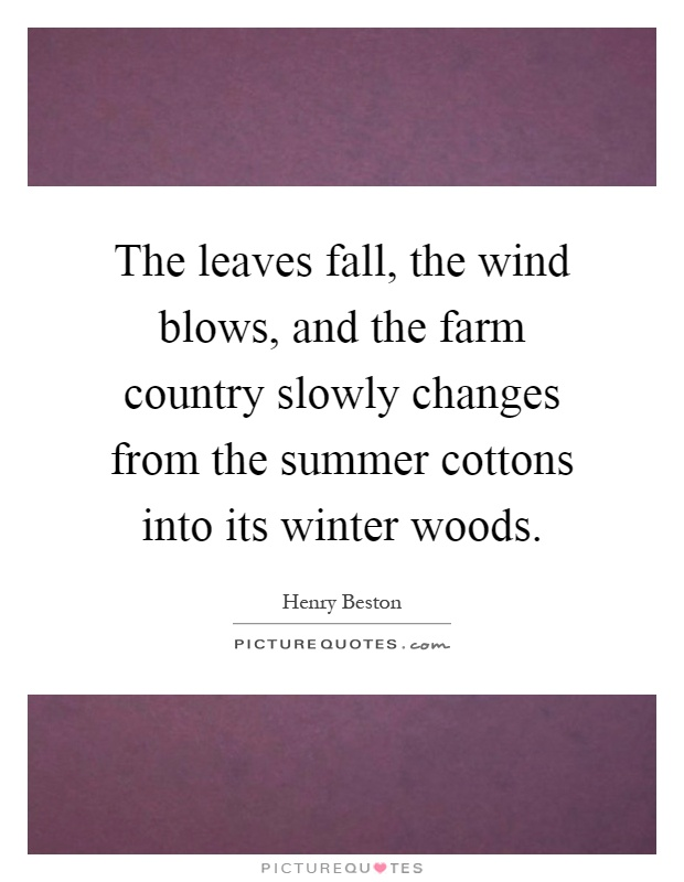 The leaves fall, the wind blows, and the farm country slowly changes from the summer cottons into its winter woods Picture Quote #1
