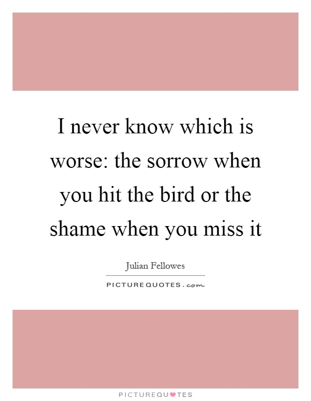 I never know which is worse: the sorrow when you hit the bird or the shame when you miss it Picture Quote #1