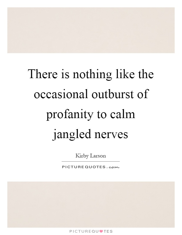 There is nothing like the occasional outburst of profanity to calm jangled nerves Picture Quote #1
