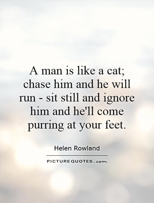 A man is like a cat; chase him and he will run - sit still and ignore him and he'll come purring at your feet Picture Quote #1