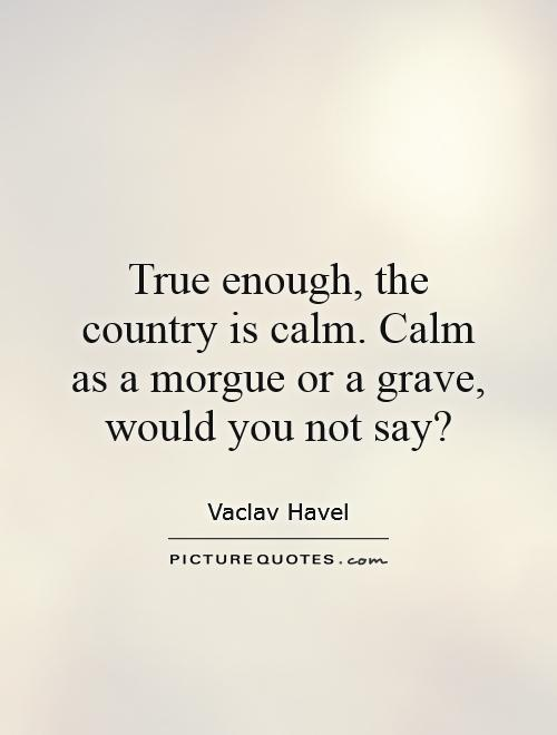 True enough, the country is calm. Calm as a morgue or a grave, would you not say? Picture Quote #1