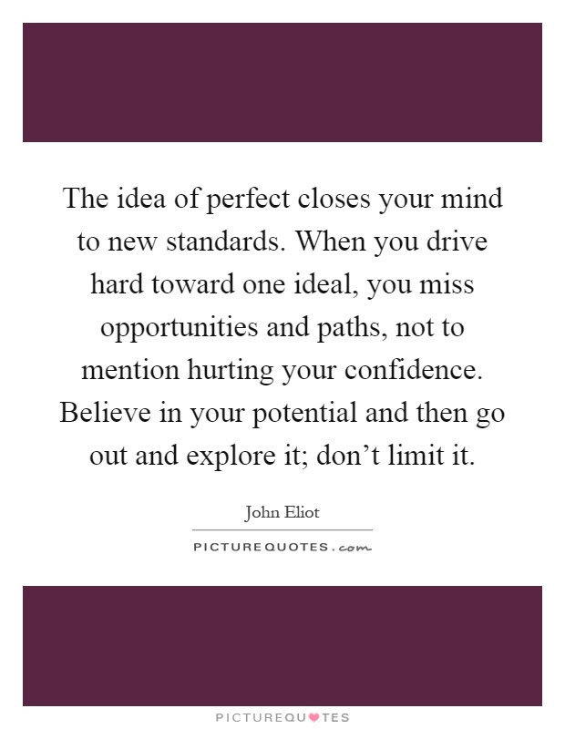 The idea of perfect closes your mind to new standards. When you drive hard toward one ideal, you miss opportunities and paths, not to mention hurting your confidence. Believe in your potential and then go out and explore it; don't limit it Picture Quote #1