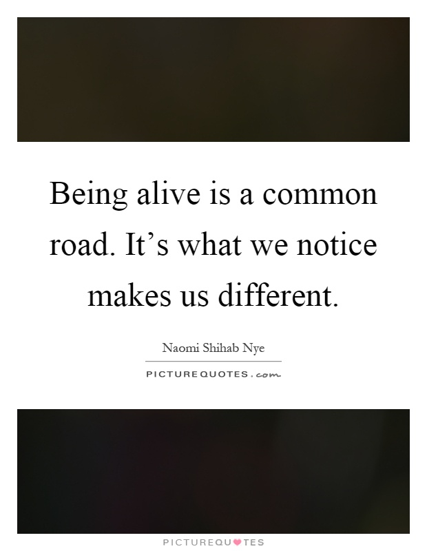 Being Alive Is A Common Road. It's What We Notice Makes Us