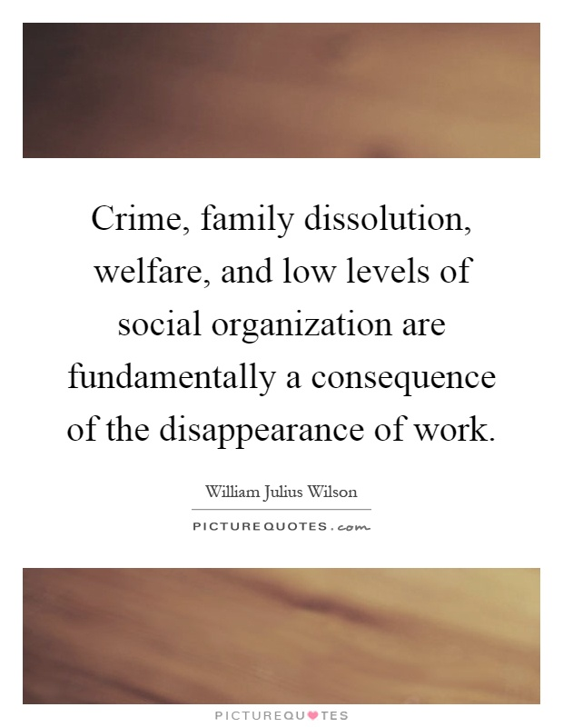 Crime, family dissolution, welfare, and low levels of social organization are fundamentally a consequence of the disappearance of work Picture Quote #1