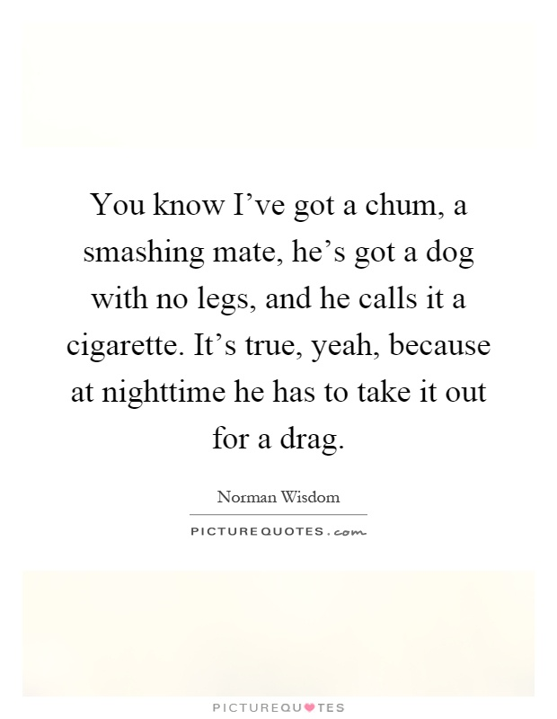 You know I've got a chum, a smashing mate, he's got a dog with no legs, and he calls it a cigarette. It's true, yeah, because at nighttime he has to take it out for a drag Picture Quote #1