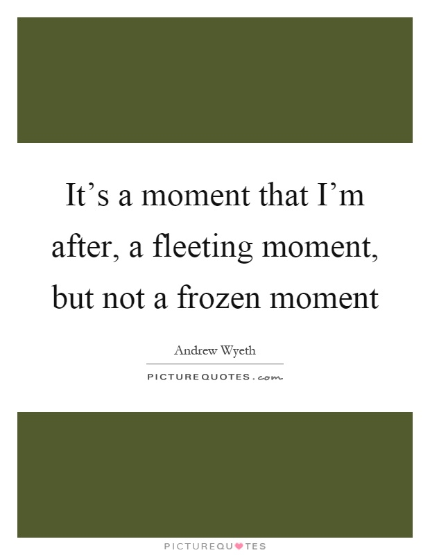 It's a moment that I'm after, a fleeting moment, but not a frozen moment Picture Quote #1