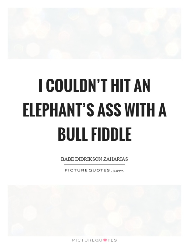 I couldn't hit an elephant's ass with a bull fiddle Picture Quote #1