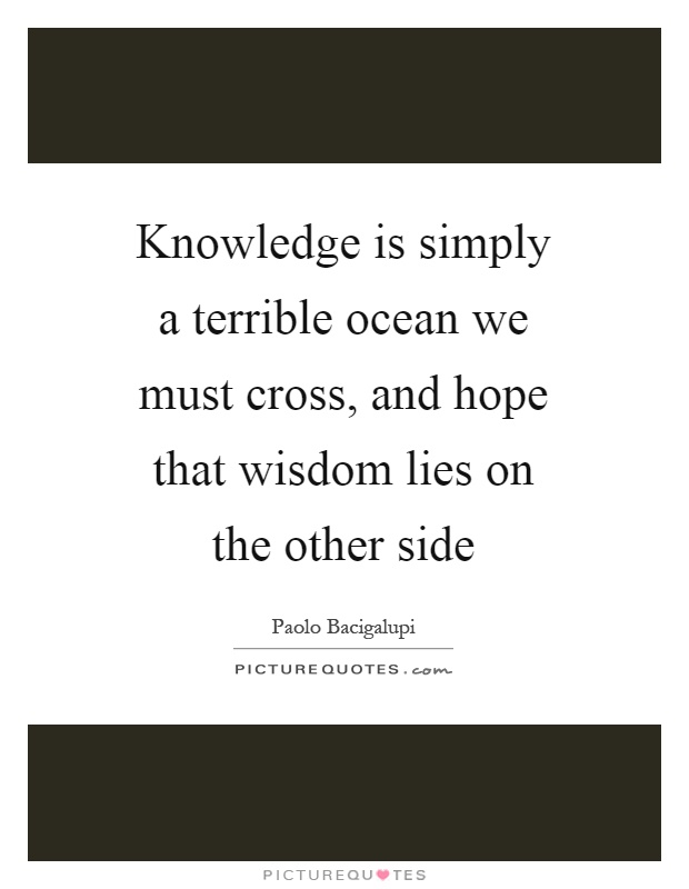 Knowledge is simply a terrible ocean we must cross, and hope that wisdom lies on the other side Picture Quote #1