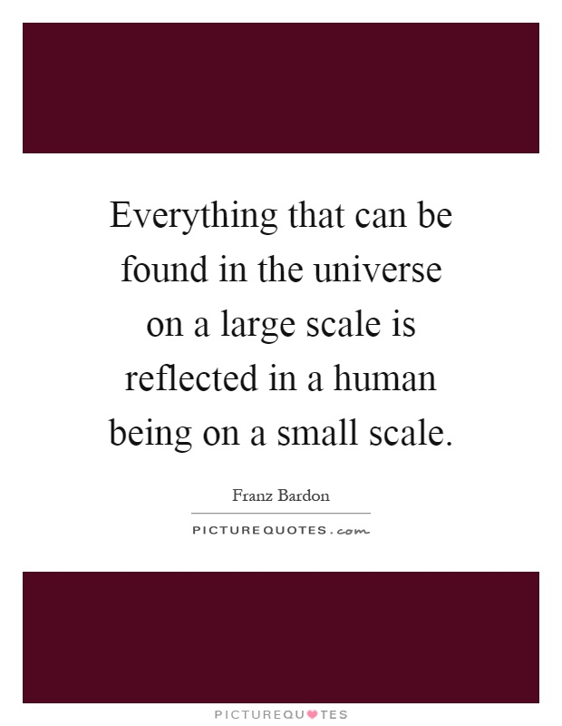 Everything that can be found in the universe on a large scale is reflected in a human being on a small scale Picture Quote #1