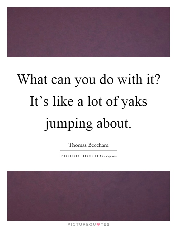 What can you do with it? It's like a lot of yaks jumping about Picture Quote #1