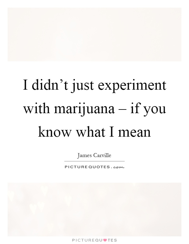 I didn't just experiment with marijuana – if you know what I mean Picture Quote #1