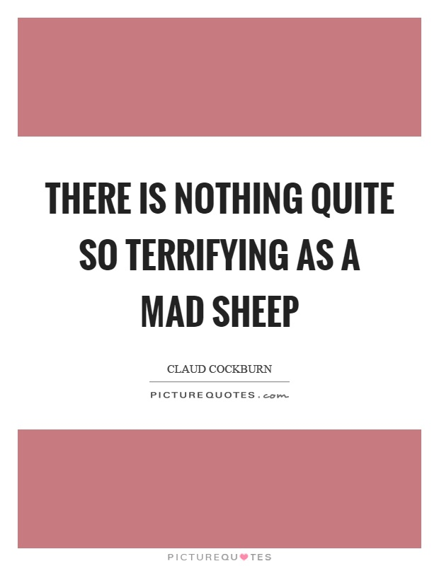 There is nothing quite so terrifying as a mad sheep Picture Quote #1