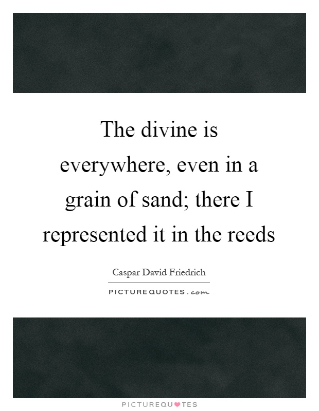 The divine is everywhere, even in a grain of sand; there I represented it in the reeds Picture Quote #1