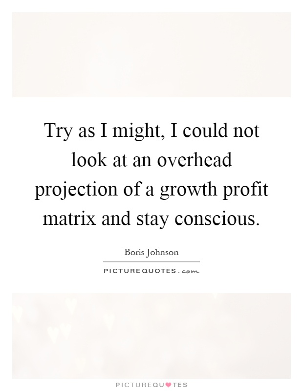 Try as I might, I could not look at an overhead projection of a growth profit matrix and stay conscious Picture Quote #1
