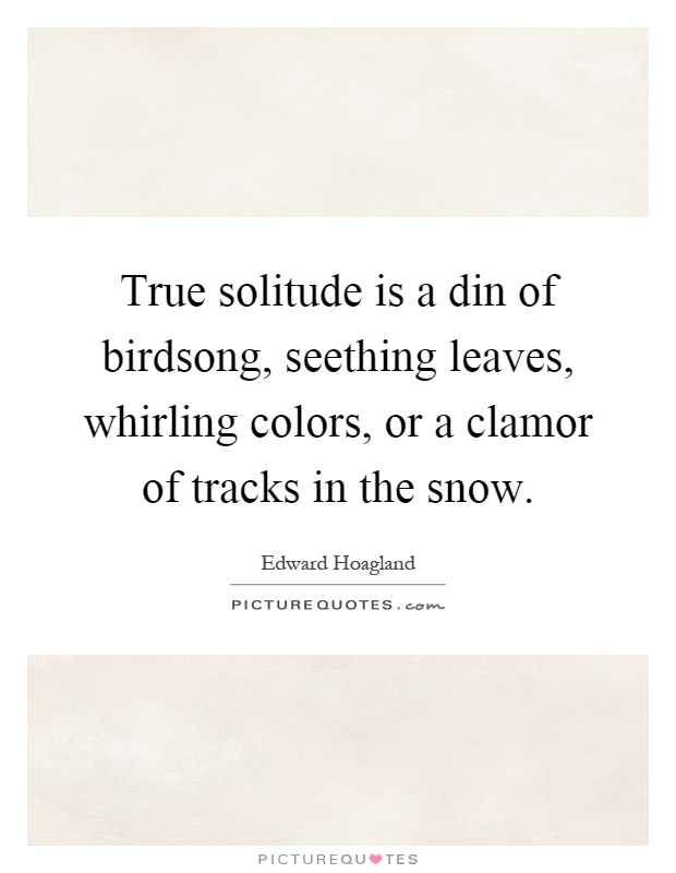 True solitude is a din of birdsong, seething leaves, whirling colors, or a clamor of tracks in the snow Picture Quote #1