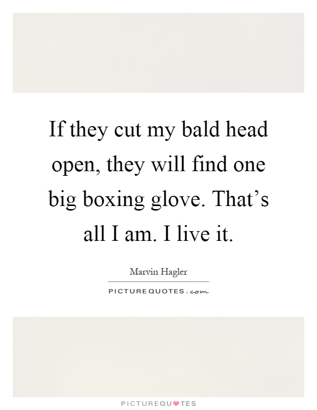 If they cut my bald head open, they will find one big boxing glove. That's all I am. I live it Picture Quote #1