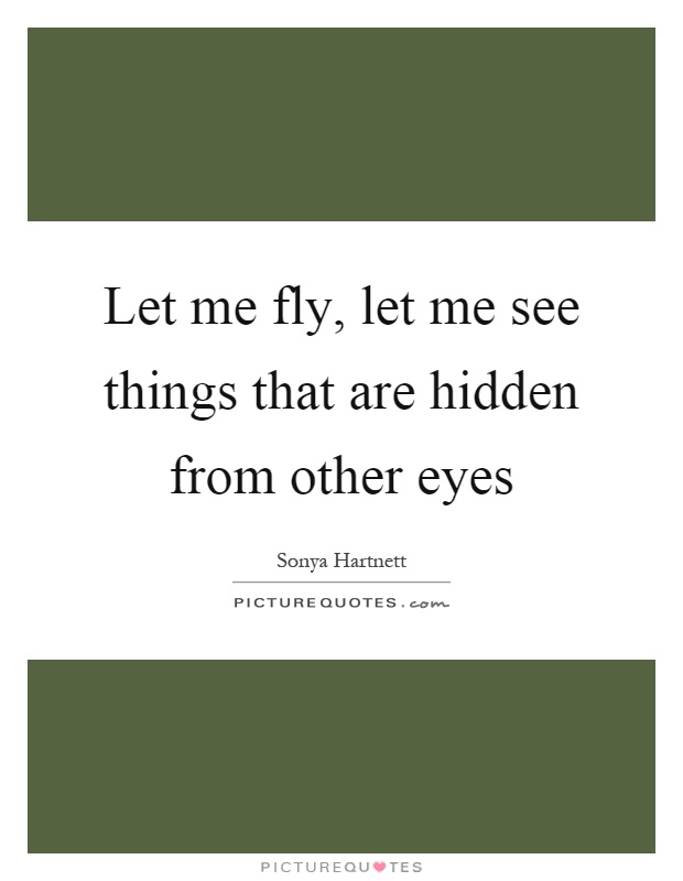 Let me fly, let me see things that are hidden from other eyes Picture Quote #1