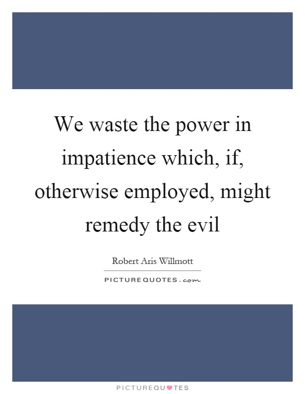 We waste the power in impatience which, if, otherwise employed, might remedy the evil Picture Quote #1