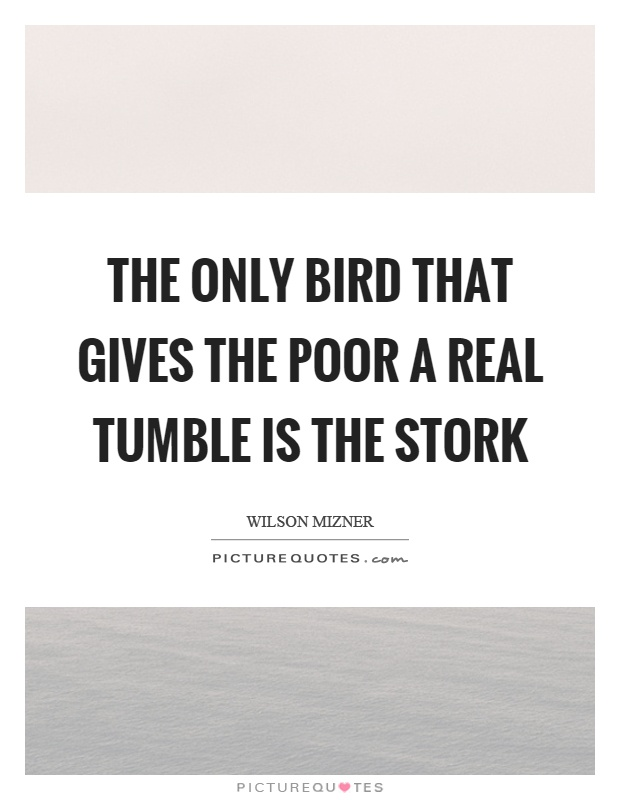 The only bird that gives the poor a real tumble is the stork Picture Quote #1