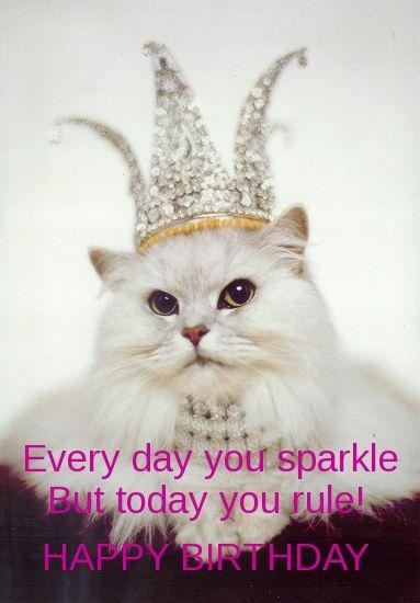 Every day you sparkle but today you rule! Happy Birthday Picture Quote #1