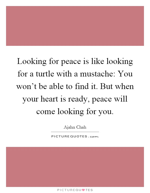 Looking for peace is like looking for a turtle with a mustache: You won't be able to find it. But when your heart is ready, peace will come looking for you Picture Quote #1