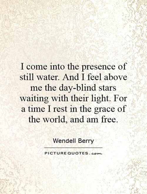 essays written by wendell berry