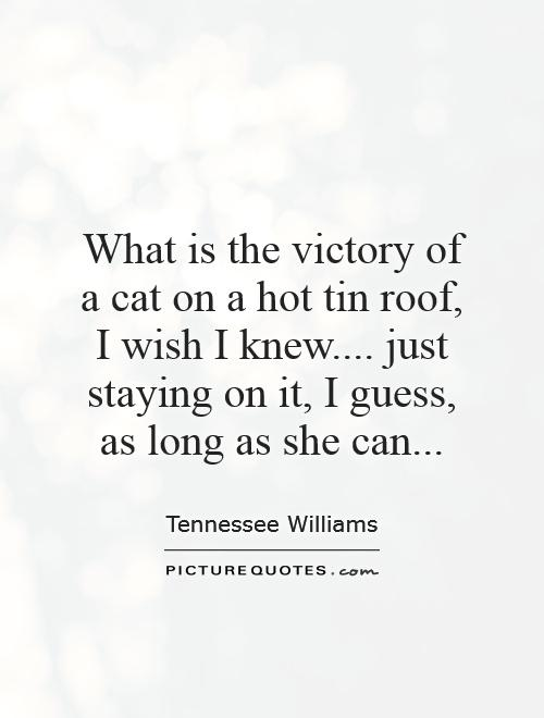What is the victory of a cat on a hot tin roof,  I wish I knew.... just staying on it, I guess, as long as she can Picture Quote #1