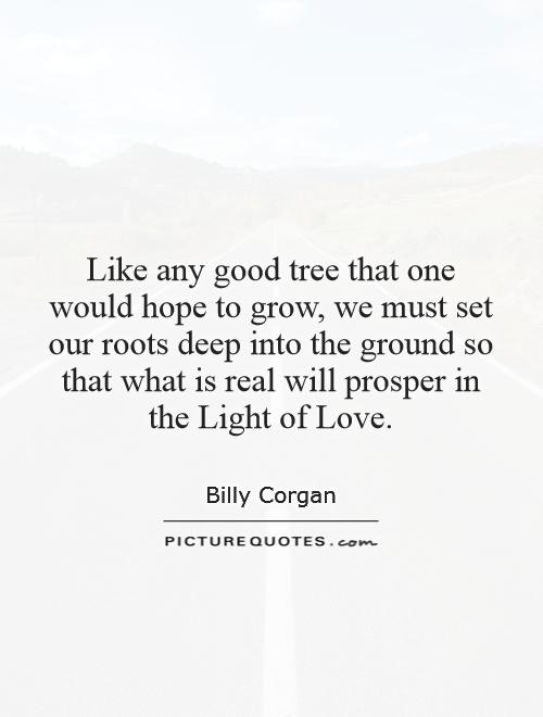 Like any good tree that one would hope to grow, we must set our roots deep into the ground so that what is real will prosper in the Light of Love Picture Quote #1