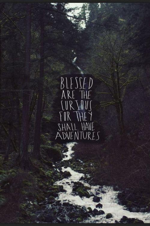 Blessed are the curious, for they shall have adventures Picture Quote #1