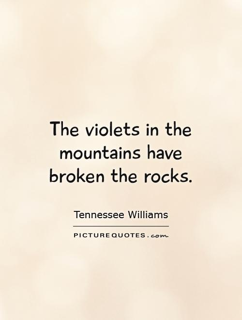 The violets in the mountains have broken the rocks Picture Quote #1