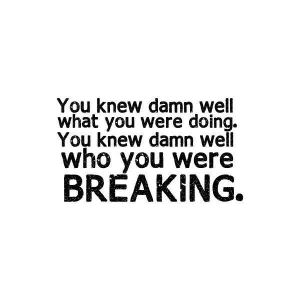 You knew damn well what you were doing. You knew damn well who you were breaking Picture Quote #1